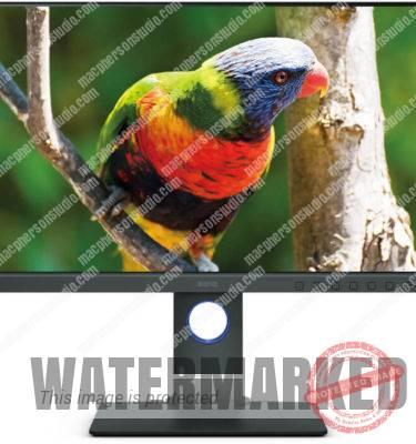 "BenQ SW240 24"" PhotoVue Monitor."